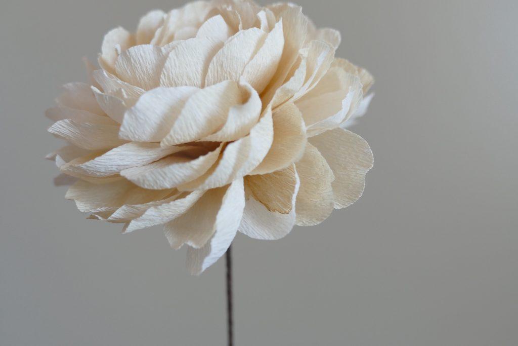 Fleur de papier _ Miluccia